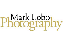 Brisbane Photographer - Mark Lobo Photography