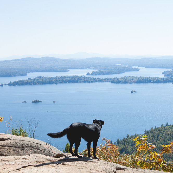 Squam LRattlesnake Trail - Squam Lake - New Hampshire - Mark Loboake - New Hampshire - Mark Lobo