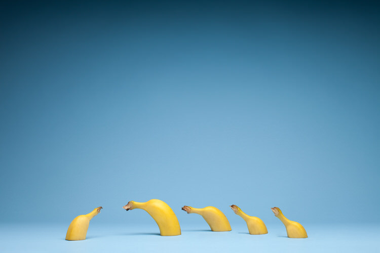 Bananas - Graze - One Fine Print - Mark Lobo