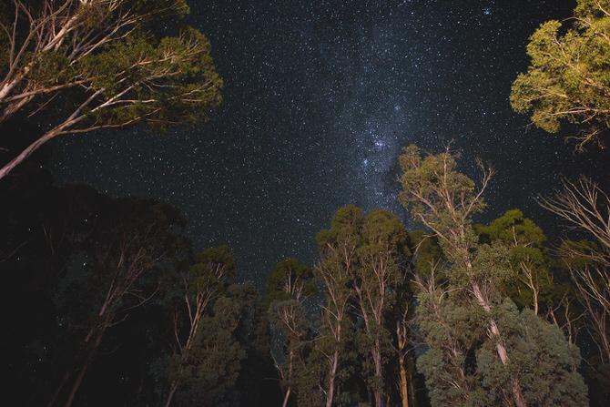 Do Lectures Australia - Mark Lobo